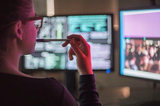 Administrateur réseaux / cyber-sécurité (31)